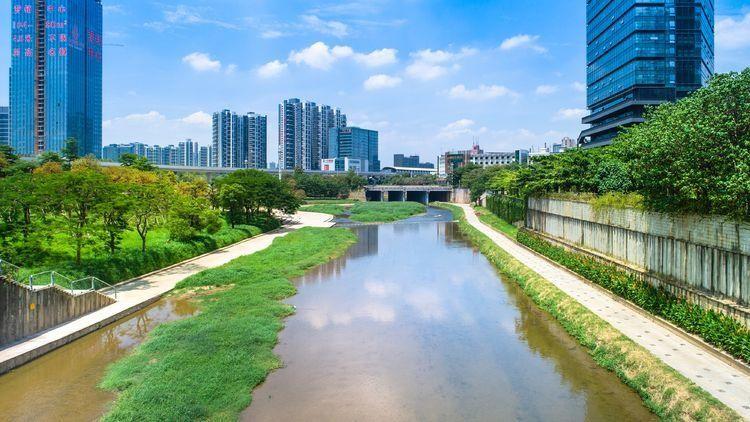 整治前的龙西河